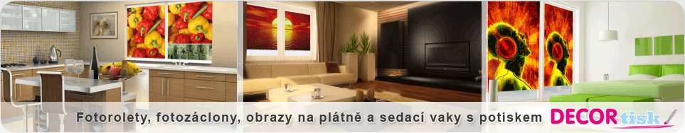 www.decortisk.cz